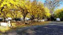 loomis-rv-park- (8)