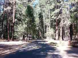 lower-pines-campground-yosemite-national-park-04