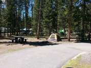 madison-campground-yellowstone-national-park-pull-thru-tent