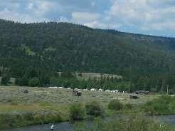 madison-river-cabins-and-rv-cameron-montana