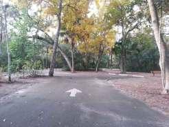 Magnolia Park Campground in Apopka Florida Roadway