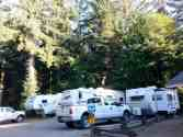 mill-creek-campground-redwoods-02