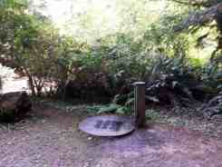 mill-creek-campground-redwoods-12