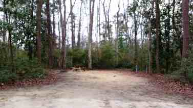 myrtle-beach-state-park-campground-myrtle-beach-sc-08
