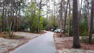 myrtle-beach-state-park-campground-myrtle-beach-sc-15
