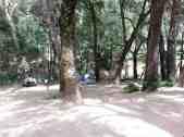 nacimiento-campground-2