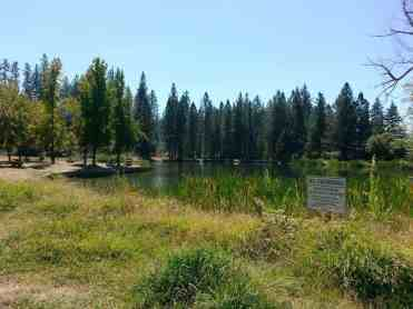nevada-county-fairgrounds-rvpark-grass-valley-14