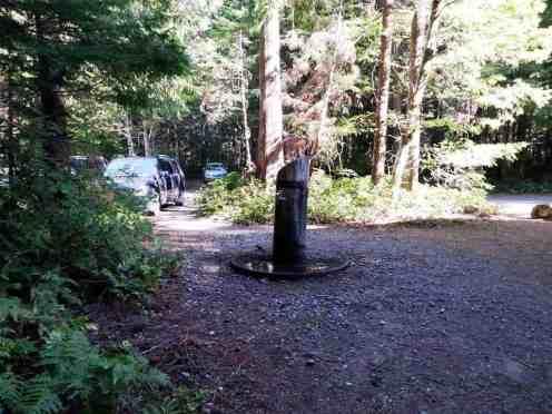 newhalem-creek-campground-north-cascade-national-park-06