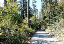 north-fork-campground-olympic-national-park-02