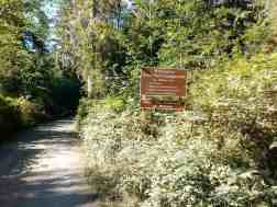 north-fork-campground-olympic-national-park-03