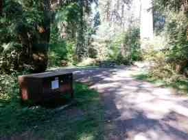 north-fork-campground-olympic-national-park-04