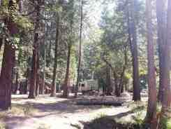 north-pines-campground-yosemite-national-park-19