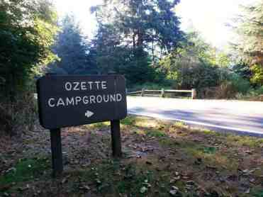 ozette-campground-olympic-national-park-03