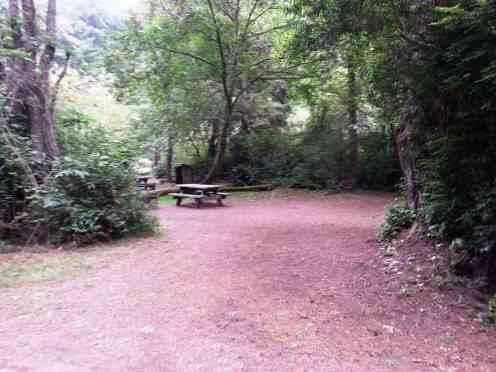 patricks-point-state-park-campground-trinidad-04