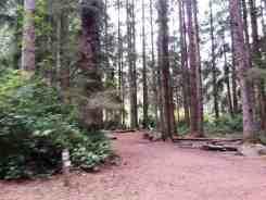patricks-point-state-park-campground-trinidad-12