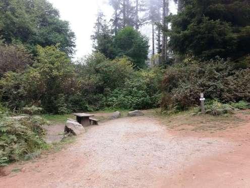 patricks-point-state-park-campground-trinidad-18