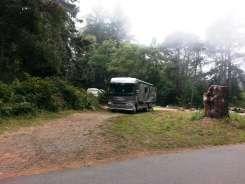 patricks-point-state-park-campground-trinidad-19
