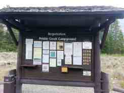 pebble-creek-campground-yellowstone-national-park-04