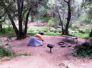 ponderosa-campground-3