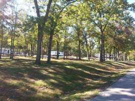 Port of Kimberling Marina RV Park and Campground in Kimberling City Missouri trees