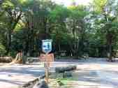 potlatch-state-park-campground-wa-1