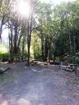 potlatch-state-park-campground-wa-4