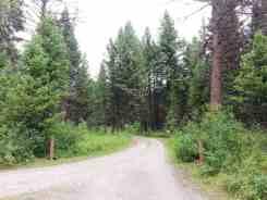 quartz-creek-campground-glacier-national-park-2