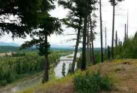 quartz-creek-campground-glacier-national-park-7