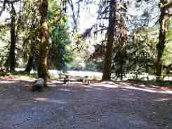 queets-campground-olympic-national-park-05