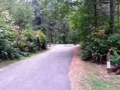 rasar-state-park-campground-concrete-wa-14