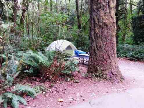 rasar-state-park-campground-concrete-wa-17
