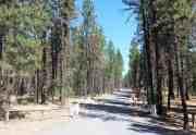 riverside-state-park-nine-mile-campground-02