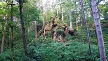 rocky-arbor-state-park-campground-wisconsin-dells-04