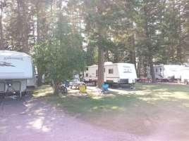 rocky-mountain-hi-rv-park-kalispell-montana-pullthru-trees