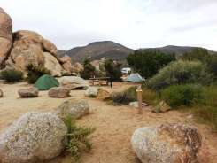 ryan-campground-joshua-tree-national-park-4