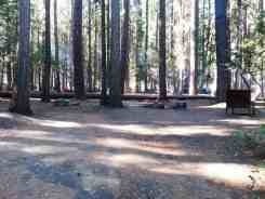 sentinel-campground-sequoia-kings-canyon-national-park-05