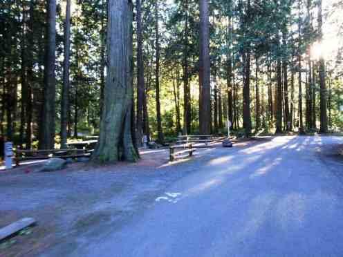 sequim-bay-state-park-campground-sequim-wa-20