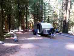 sol-duc-campground-olympic-national-park-7