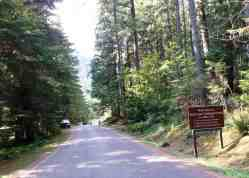 staircase-campground-olympic-national-park-0106