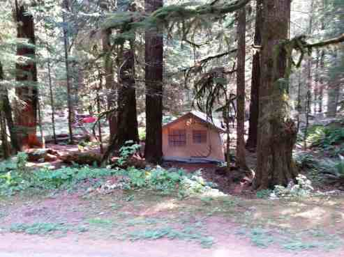 staircase-campground-olympic-national-park-0107