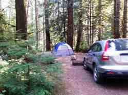 staircase-campground-olympic-national-park-0110