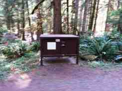 staircase-campground-olympic-national-park-0111