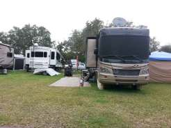 Tampa East RV Park in Dover Florida Grass Sites