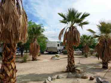 the-springs-at-borrego-rv-resort-23