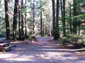 three-rivers-campground-forks-wa-03