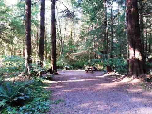 three-rivers-campground-forks-wa-05