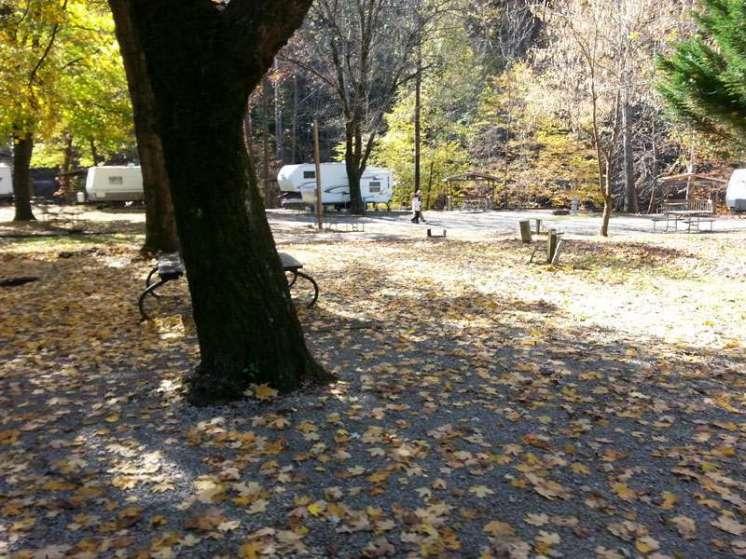 Tremont Outdoor Resort in Townsend Tennessee Pull thru