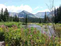 two-medicine-campground-glacier-national-park-29