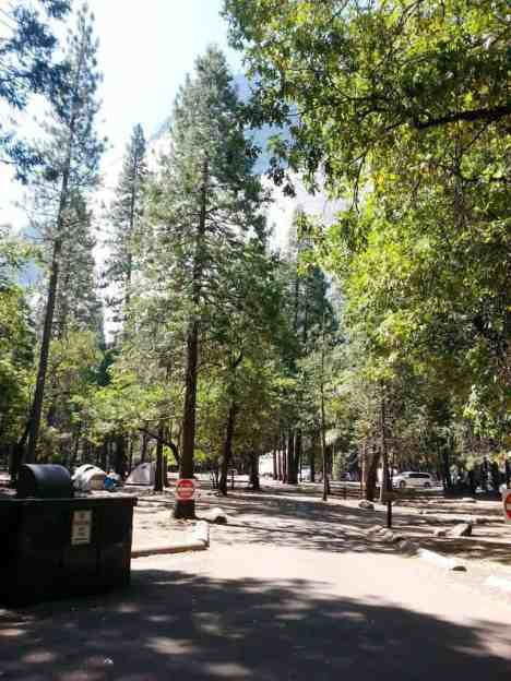 upper-pines-campground-yosemite-national-park-03