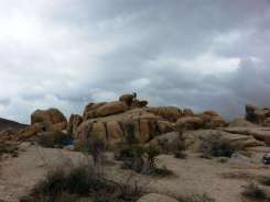 white-tank-campground-joshua-tree-national-park-06